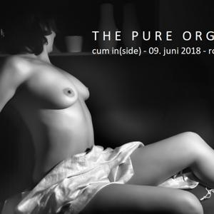 The Pure Orgy - cum in (side)